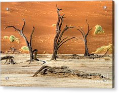 Scenic View At Sossusvlei Acrylic Print