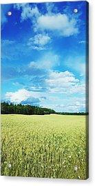 Scenic View Of Field Against Cloudy Sky Acrylic Print by Jonas Rask / EyeEm