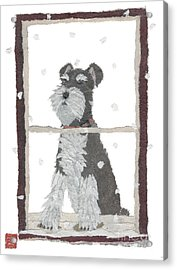 Schnauzer Art Hand-torn Newspaper Collage Art Acrylic Print by Keiko Suzuki Bless Hue