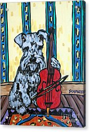 Schnauzer Playing Cello Acrylic Print by Jay  Schmetz