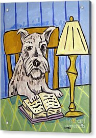 Schnauzer Reading A Book Acrylic Print by Jay  Schmetz