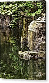 Acrylic Print featuring the photograph Scholar Garden Reflections by Vicki DeVico