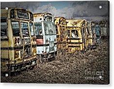 School Buses Acrylic Print