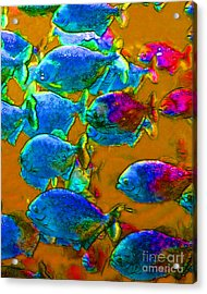 School Of Piranha V1 Acrylic Print by Wingsdomain Art and Photography