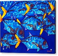 Schooling  Jack Fish Acrylic Print by Daniel Jean-Baptiste
