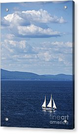 Schooner On The Bay Acrylic Print by Diane Diederich