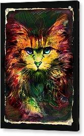Schrodinger's Cat Acrylic Print