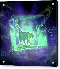 Schrodinger's Cat Acrylic Print by Harald Ritsch