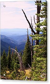 Schweitzer Mountain 1 Acrylic Print by Ellen Tully
