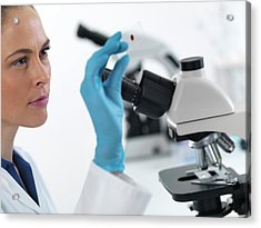 Scientist With Microscope Slide Acrylic Print by Tek Image