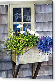 'sconset Window Box Acrylic Print by Karol Wyckoff