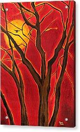 Scorpio Sun By Jaime Haney Acrylic Print