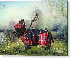 Scottie Of The Glen Acrylic Print