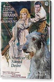 Scottish Deerhound Art - A Streetcar Named Desire Movie Poster Acrylic Print by Sandra Sij
