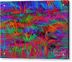 Scratchy Acrylic Print by Keith Mills