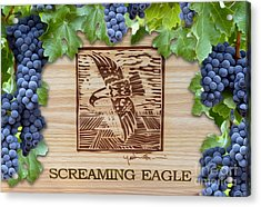 Screaming Eagle Acrylic Print by Jon Neidert