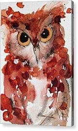Screech Acrylic Print by Dawn Derman