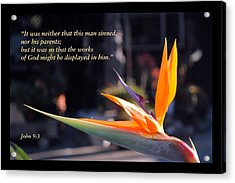 Acrylic Print featuring the photograph Scriptures Of Comfort 2 by Kate Word