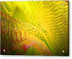 Galaxy E Acrylic Print