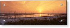 Sea At Dusk, Gulf Of Mexico, Tigertail Acrylic Print