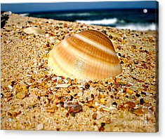 Sea Beyond The Shell Acrylic Print