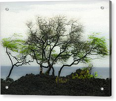 Acrylic Print featuring the photograph Sea Breeze 2 by Jim Snyder