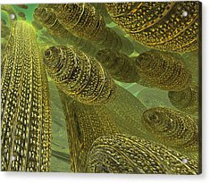 Acrylic Print featuring the digital art Sea Eggs by Melissa Messick