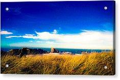 Sea Grass At Elephant Rock Acrylic Print
