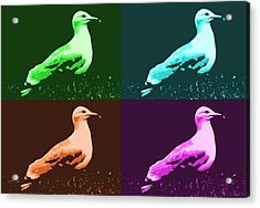 Acrylic Print featuring the photograph Sea Gulls 4  by Al Fritz