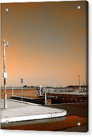 Sea Gulls Watching Over The Wetlands In Orange Acrylic Print by Amazing Photographs AKA Christian Wilson