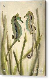 Sea Horses Acrylic Print by Addie Hocynec