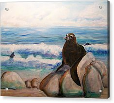 Sea Lion Acrylic Print by Rich Mason