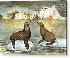 Sea Lions Acrylic Print by Juan  Bosco