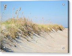 Sea Oat Serenity Acrylic Print by Suzi Nelson
