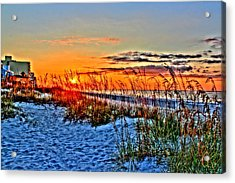 Sea Oats At Sunrise Acrylic Print