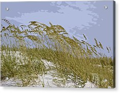 Acrylic Print featuring the photograph Sea Oats by Kathy Ponce