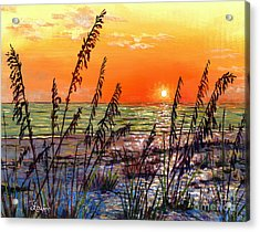 Sea Oats Sunset Acrylic Print