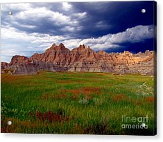 Sea Of Color Acrylic Print by Laurie Wilcox