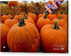 Sea Of Pumpkins Acrylic Print by Amy Cicconi