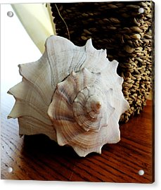 Acrylic Print featuring the photograph Sea Shell And Basket by Yolanda Rodriguez