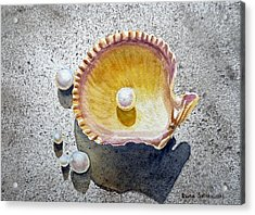 Sea Shell And Pearls Acrylic Print