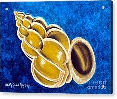 Sea Shell Original Painting Oil On Canvas No.1. Acrylic Print by Drinka Mercep