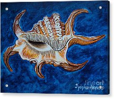 Sea Shell Original Painting Oil On Canvas No.3. Acrylic Print by Drinka Mercep