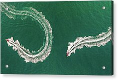 Sea Snake Acrylic Print