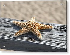 Sea Star On Railing Acrylic Print