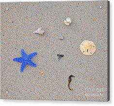 Sea Swag - Dark Blue Acrylic Print