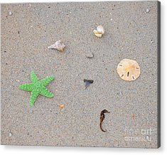 Sea Swag - Green Acrylic Print by Al Powell Photography USA