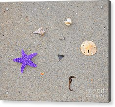 Sea Swag - Purple Acrylic Print by Al Powell Photography USA