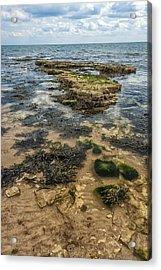 Sea Through Acrylic Print by Svetlana Sewell
