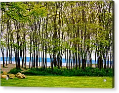 Sea Through The Trees Acrylic Print